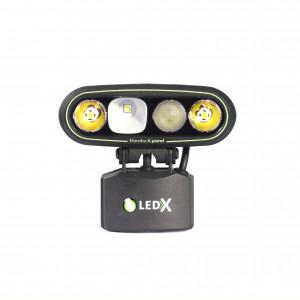 LEDX Mamba 4000